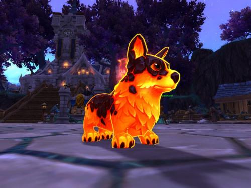 ¡Sigue reuniendo Talismanes de mascotas pulido para Shadowlands!