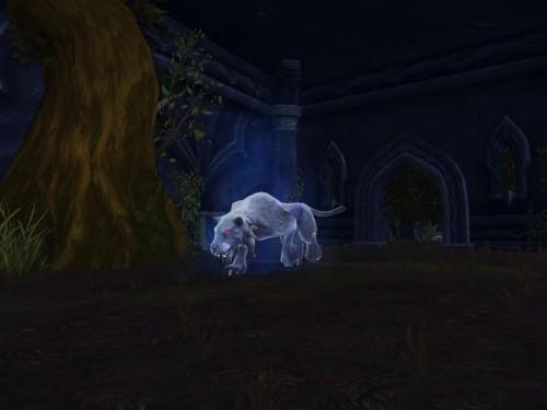 Gatito de Sable Resucitado: Mascota de Duelo