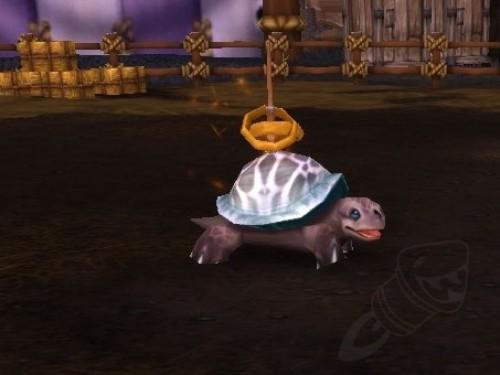 Lanzamiento a la Tortuga triunfante