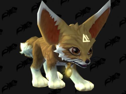 Sombra: ¡Próxima Mascota de la Tienda!