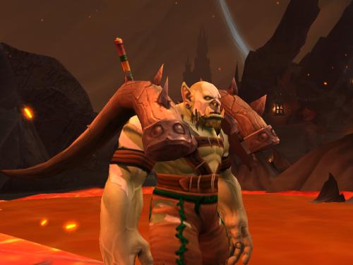 Blizzard sigue trabajando para que podamos transfigurar los hombros por separado