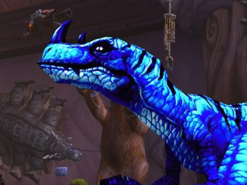 Gon: Mascota de Cazador