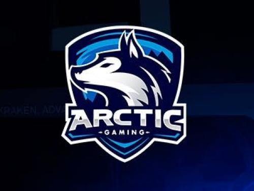 Arctic Gaming se desvincula del equipo de Overwatch