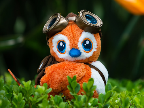 Pepe viajero aterriza en la Tienda Blizzard Gear