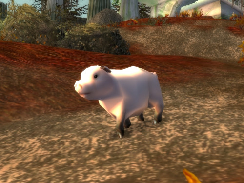 Guía de Mago Classic: Obtención de la Polimorfia de Cerdo